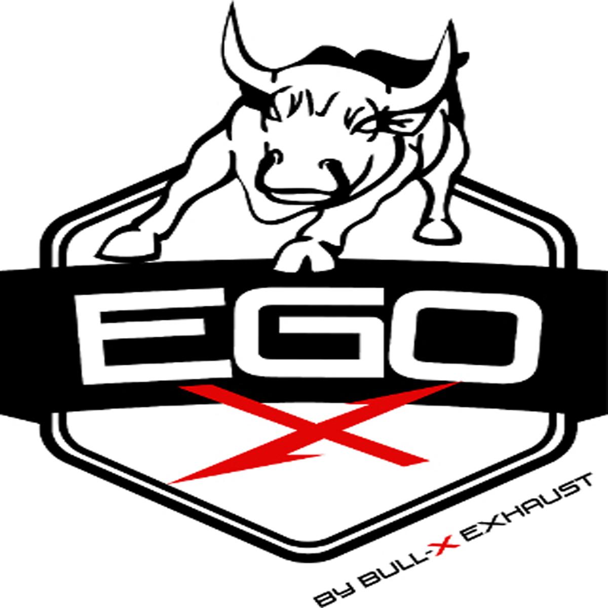 Abgasprogramm: EGO-X